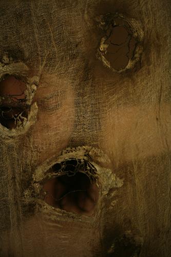 patriciadeisidoro-behind-scar03