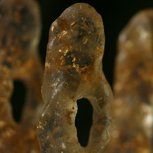 patriciadeisidoro-confine-eldershome