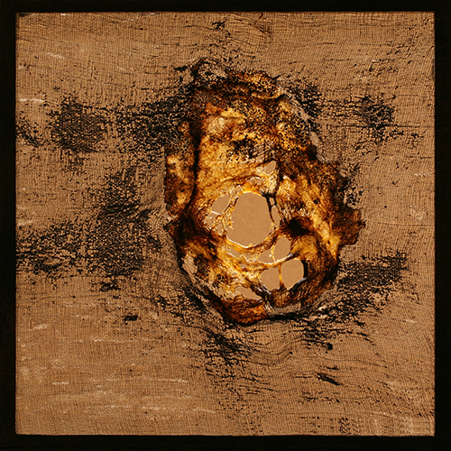 patriciadeisidoro-icaro-fiery01a