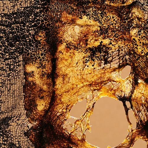 patriciadeisidoro-icaro-fiery01b