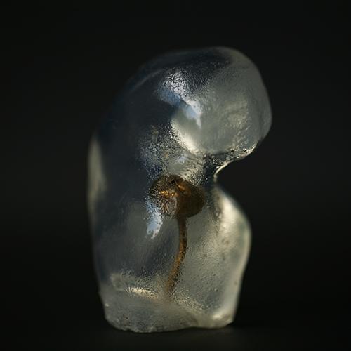 patriciadeisidoro-incube-embryo01