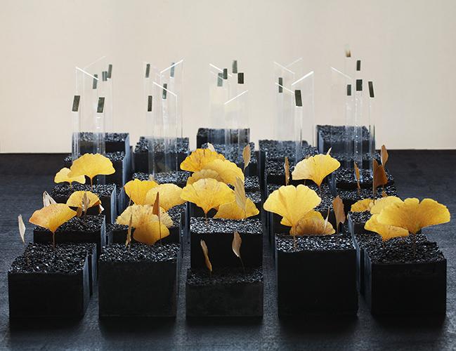 patriciadeisidoro-rhizome-01